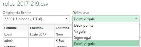 capture import roles.csv Excel - 2